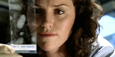 Enigma (Sara Sidle (CSI) fanlisting)